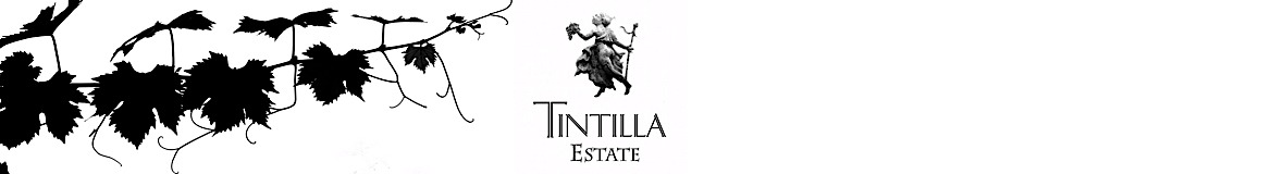 Tintilla Estate wines, vineyard and olives